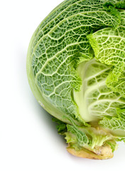 savoy cabbage on a white background