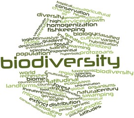Word cloud for Biodiversity
