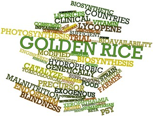Word cloud for Golden rice