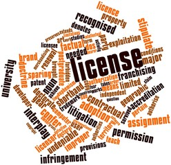 Word cloud for License