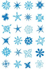 Snowflake collection elements Vector