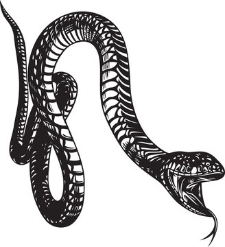 Big snake with open mouth, black and white style