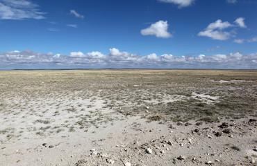 Kenya -  Dry season