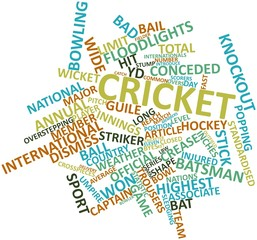 Word cloud for Cricket