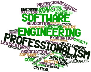 Word cloud for Software engineering professionalism