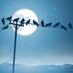 Lots of Birds on Telephone Lines with Night Sky and Moon