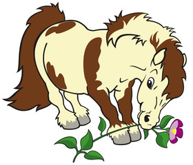 Poster Pony cartoon pony with flower