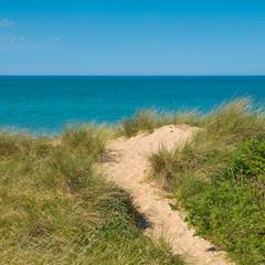 Wall Mural - Beach, dune, sea view