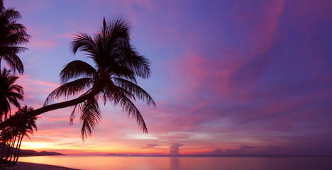 Panorama of tropical sunset with palm tree silhoette at beach