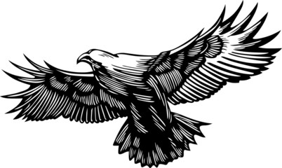 Flying predator