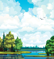 Canvas Prints River, lake Summer landscape with forest, trees, lake