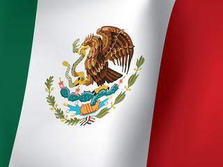 close up of waved Mexican flag vector illustration