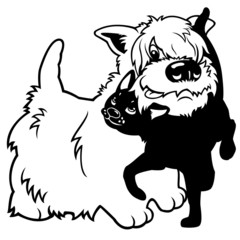 cartoon west terrier and  black cat