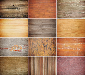 Fototapete - Collection of wood texture backgrounds