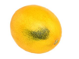 Ripe melon on white background. Isolated
