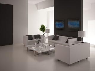 Modern Black & White Luxury Living Room Interior