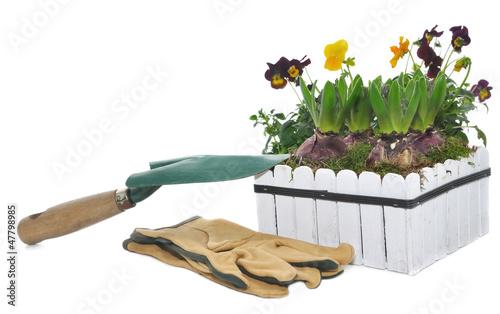 bac fleurs et outils de jardinage photo libre de. Black Bedroom Furniture Sets. Home Design Ideas