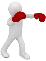3D Boxer fighter