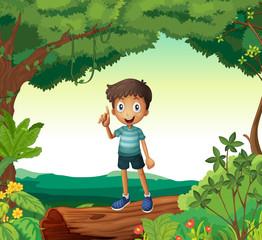 Foto auf Leinwand Fantasie-Landschaft A boy standing on wood in nature