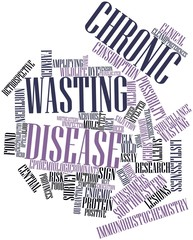 Word cloud for Chronic wasting disease