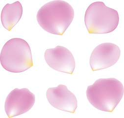 Rose Petal Set