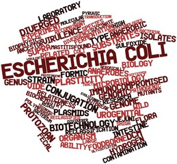 Word cloud for Escherichia coli