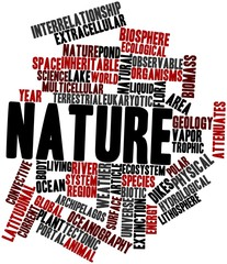 Word cloud for Nature