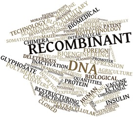 Word cloud for Recombinant DNA