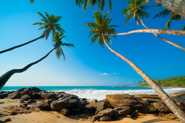 Wall Mural - Tropical beach
