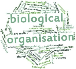 Word cloud for Biological organisation