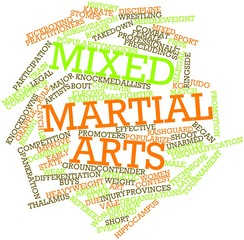 Word cloud for Mixed martial arts