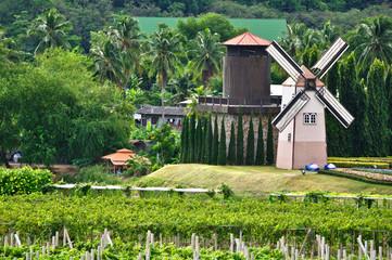 Prototype Windmillhouse in thailand