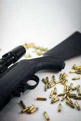 Rifle 22 LR with Ammunition