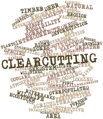 Word cloud for Clearcutting