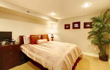 Guest bedroom in the basement.