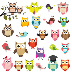 Aluminium Prints Owls cartoon set of owls