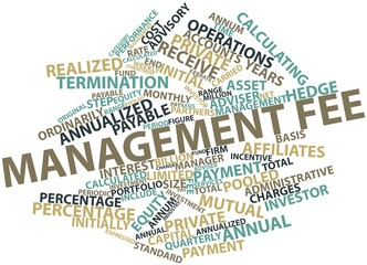 Word cloud for Management fee