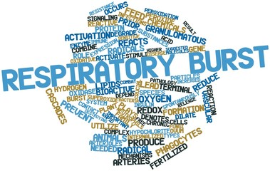 Word cloud for Respiratory burst