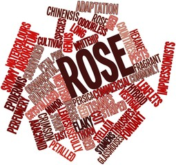 Word cloud for Rose