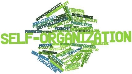 Word cloud for Self-organization