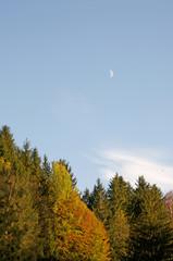 moonlight at daylight