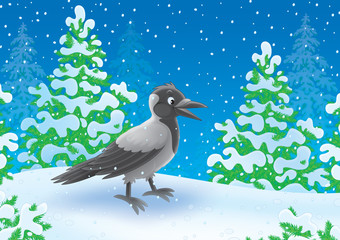 Crow walking in a snow-covered winter forest
