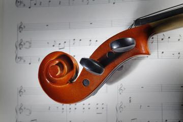 Wall Mural - violino