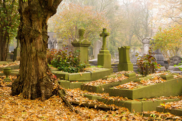 Aluminium Prints Cemetery Autumn morning