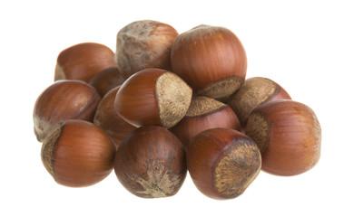 Dried hazelnuts