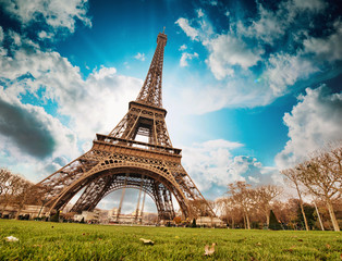 Wall Mural - Paris. Wonderful wide angle view of Eiffel Tower from street lev