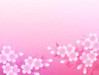 Washi Sakura