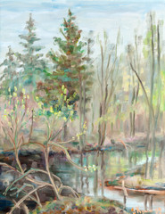 Spring on a bog
