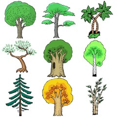 Set of cartoon, vector illustration of trees