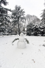 snowman in a garden